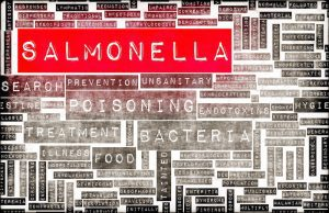 Salmonella poisoning awareness and prevention word cloud